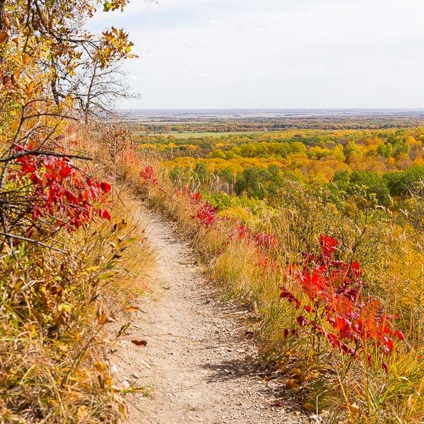 bald hill trail in riding mountain national park in fall
